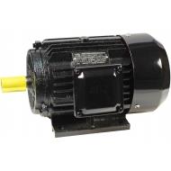 Trifaziai asinchroniniai elektros varikliai 3000aps./min (2-polių)