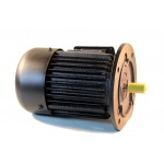 Flanšinis trifazis asinchroninis elektros variklis 0.75kW (Y-802-4F)