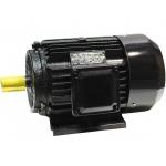Trifazis asinchroninis elektros variklis 11kW (Y2-160M1-2)